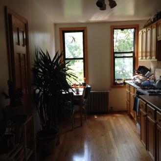 Goodbye old kitchen.