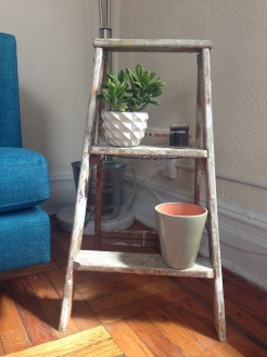 Perfect new plant ladder